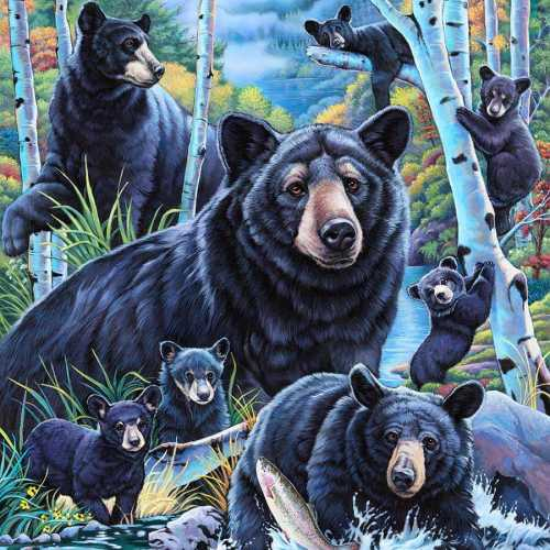 Bears in the Birches